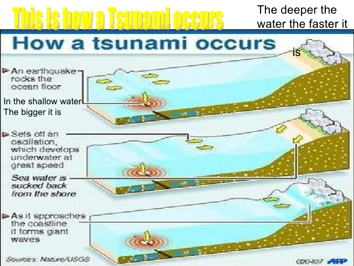 The Astonishing Tale of Disastrous Tsunami - Omagg